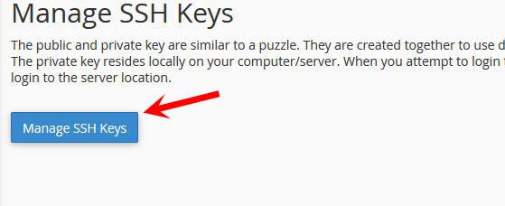 Cách tạo và sử dụng kết nối SSH Access của cpanel?