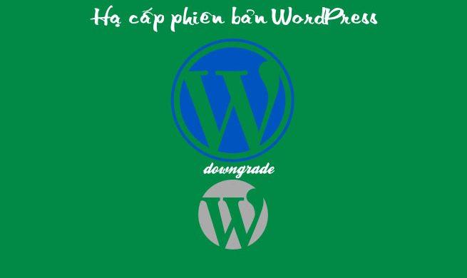 Hướng dẫn hạ cấp phiên bản wordpress