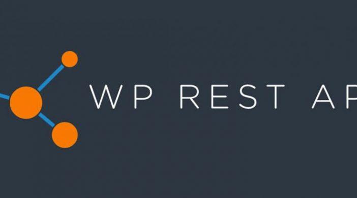 Hướng dẫn WordPress REST AP