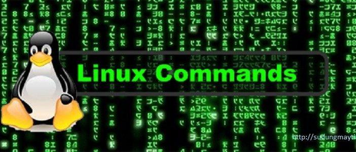 Các câu lệnh (command) cơ bản trên Server Linux
