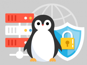 linux-vps-security-the-basics-300x225
