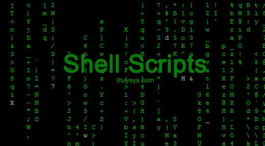 tao-shell-script-auto-start-service